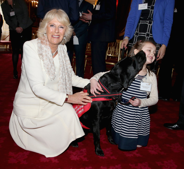 Camilla et les chiens