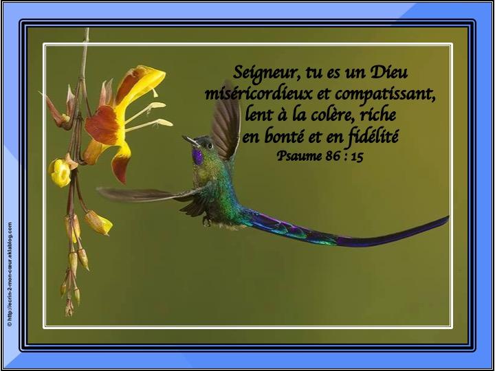 Tu es un Dieu miséricordieux - Psaume 86 : 15
