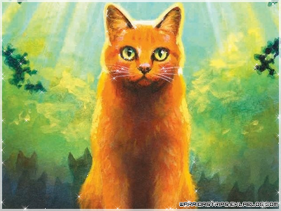 Cycle I : Warrior Cats