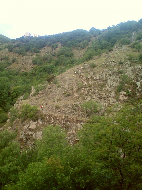 L'été dans les Pyrénées Orientales