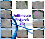 PictureIt 210 - Sniffmouse