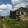 A la cabane de Peyrelue un autre chien, Border collie, vient à ma rencontre
