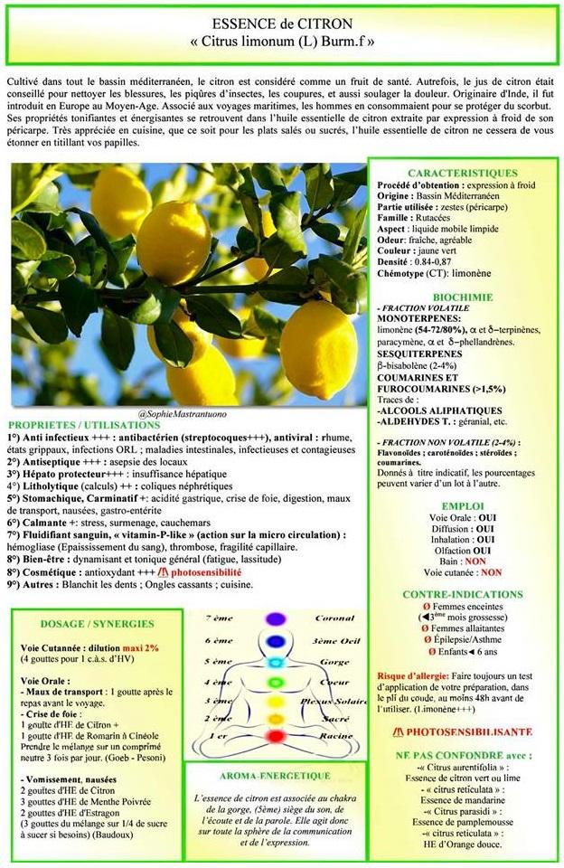 0-brouillon Citron
