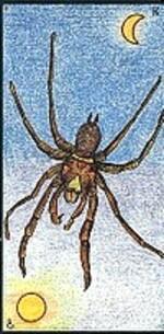 08 - l'araignée