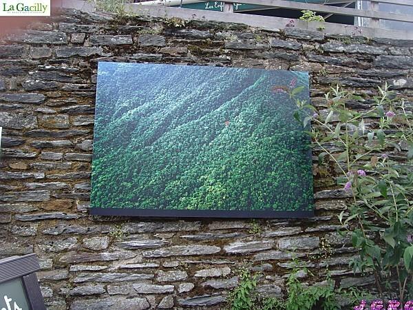 LA--GACILLY---2011-263N.jpg