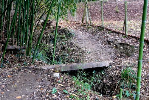 Randonnée: le petit pont ...