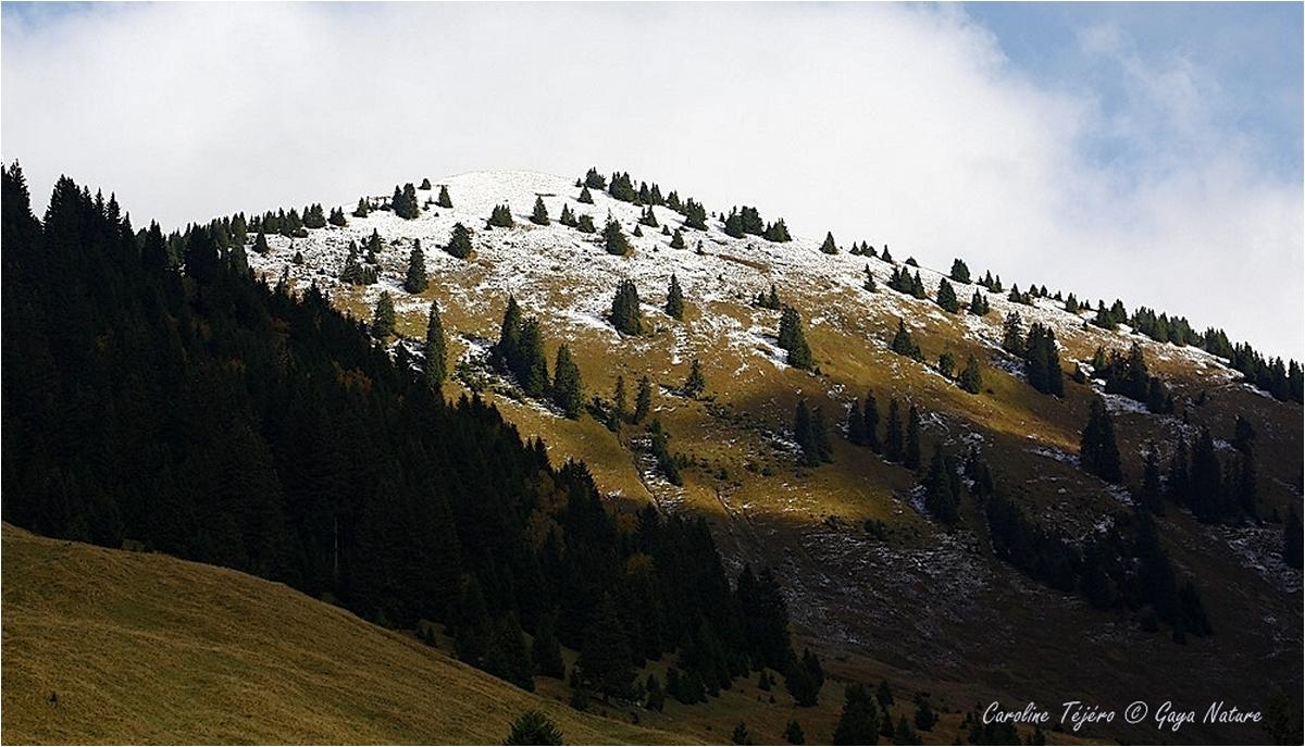 Haute-Savoie: Pointe d'Autigny (1/3)