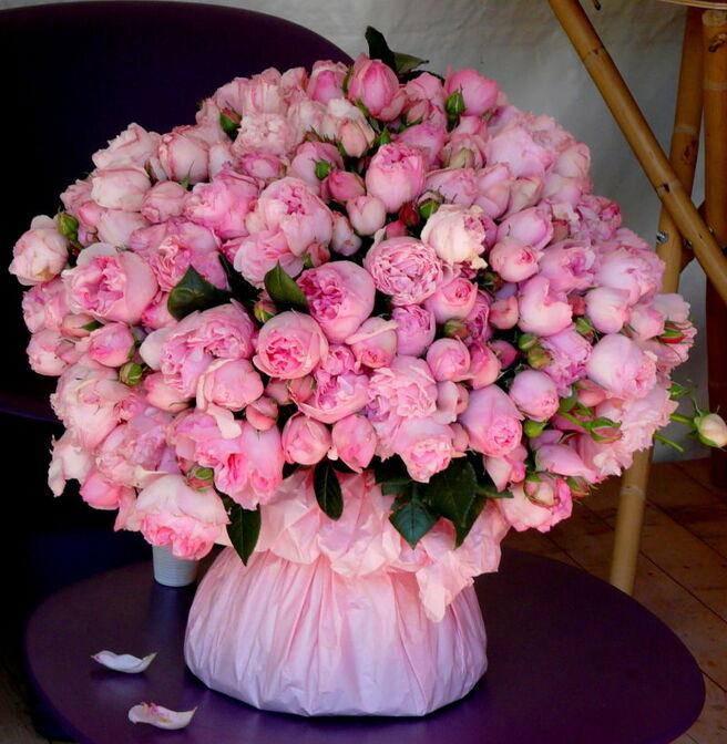 Magnifique bouquet de pivoines