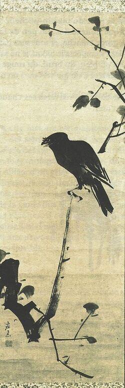 Différences entre un corbeau et une corneille