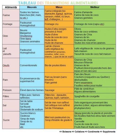Tableau des transitions alimentaires (Pauline et