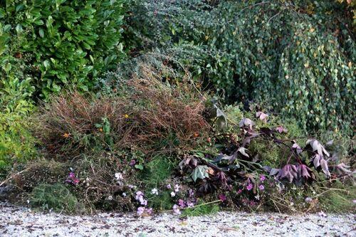 Travaux d'automne à la Roseraie (2/2)