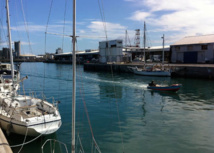 Le Port : De la viande jetée dans le port pour attirer les requins ?