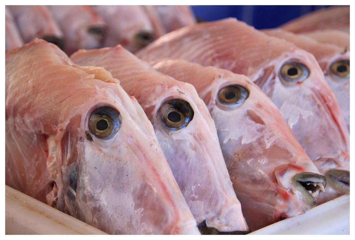 du bon poisson .... île St Martin ....on dirait les yeux de poissons que les candidats de Koh-Lanta doivent manger .... beurckkkk !!!