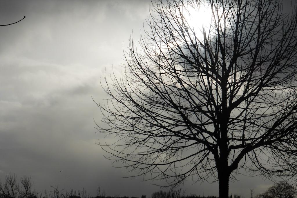 Balade de dimanche, un peu sous la pluie!