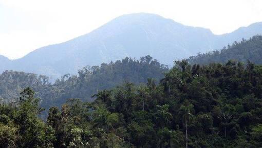 Le Brésil capitaliste détruit l'Amazonie, Cuba socialiste plante des arbres.(IC.fr-6/09/19)