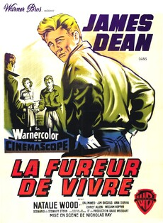 LA FUREUR DE VIVRE BOX OFFICE ANNUEL FRANCE 1956 BOX OFFICE STAR