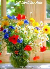 Peut être une image de fleur et texte qui dit 'Joli Lundi Les Amis Images Merveilleuses'