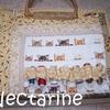 Nectarine2