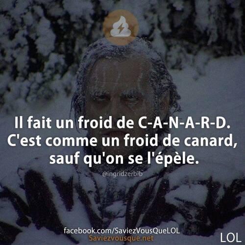 Froid de C-A-N-A-R-D