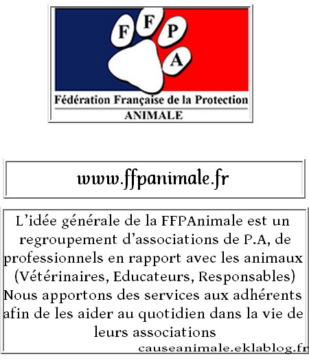 Fondations et associations