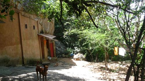 Anuradhapura, Mihintale et Tricomalee du 16 au 18 février 2015