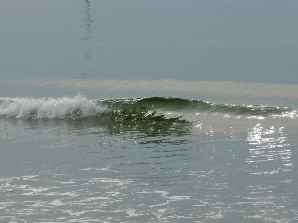 Balade sur le littoral de la côte d'Opale.