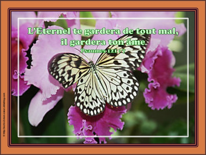 L'Eternel te gardera de tout mal - Psaumes 121 : 7