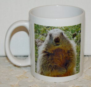 Collection - Mugs Marmottes