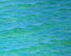 Painting water with Mark Waller