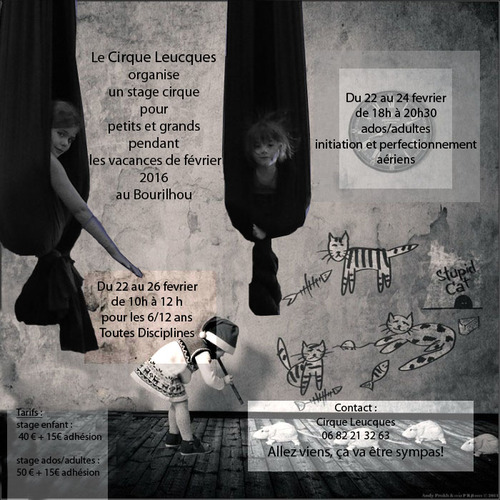 stage cirque 2016