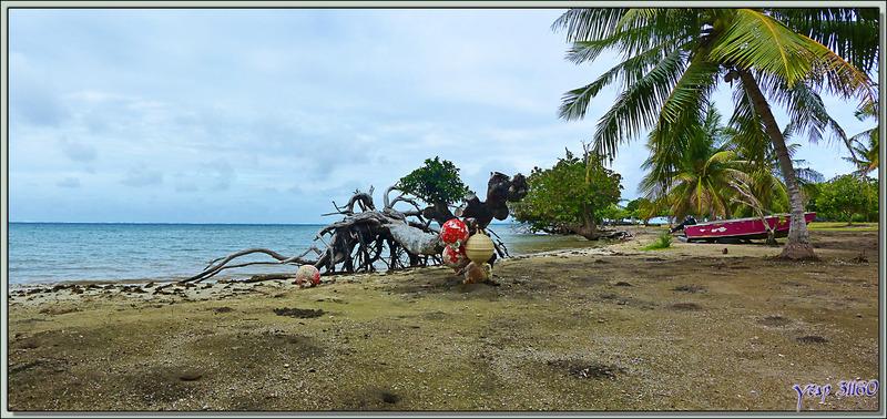 Paysage au marae Taputapuatea - Raiatea - Polynésie française