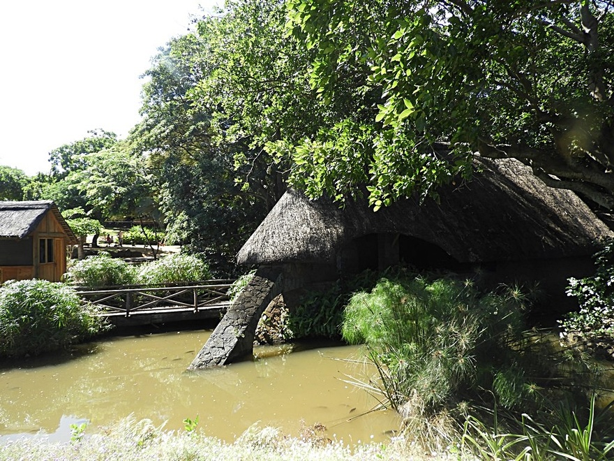 Île Maurice : Casela  parc zoologique (1/6)