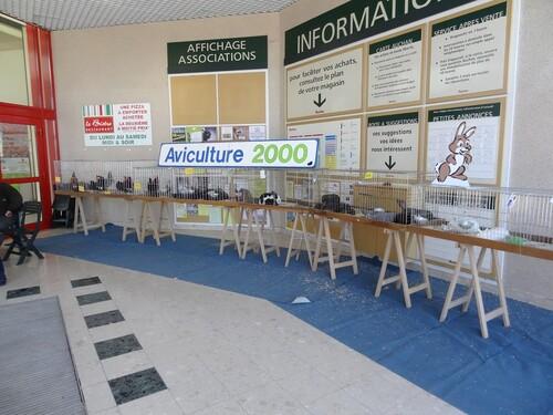 Le forum des Associations dans la galerie marchande d'Auchan..