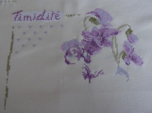 Sal LLP Violettes