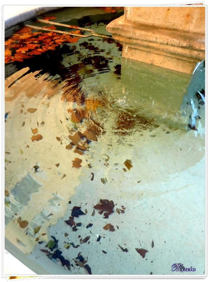 Reflets dans l'eau...