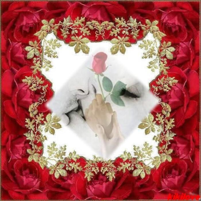 A Vous Tous Mes Amis Merci de votre partage vous êtes exceptionels Bon Mardi