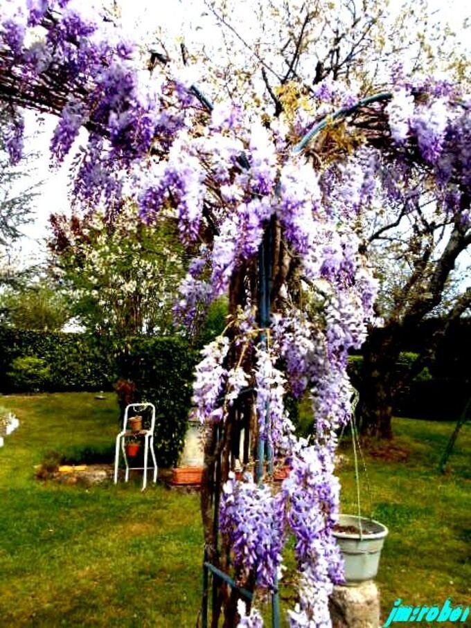 Le jardin un mode de confinement que l'on apprécie