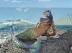 Supplique pour etre enterré sur la plage de sète..