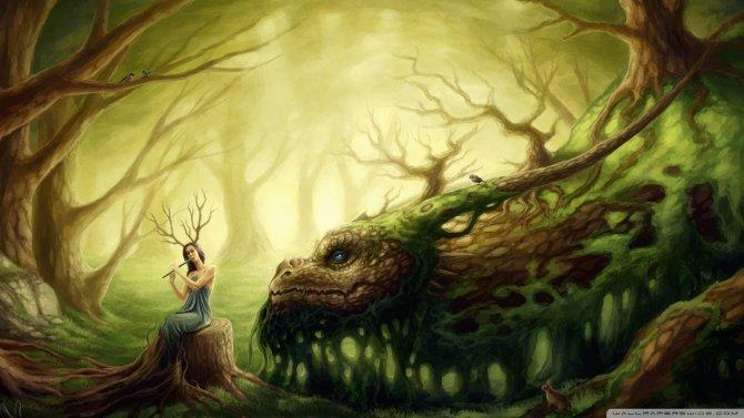 Fées, lutins, elfes : entre légende et réalité