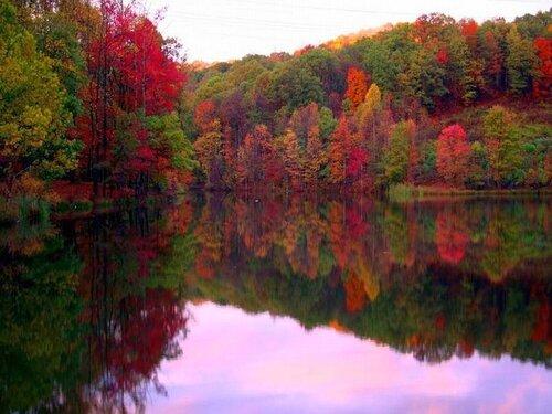 Vendredi senryû, haïku sur l'automne...