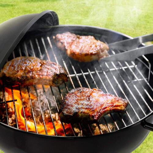Small Cheap Charcoal Grill - Buy Electric, Charcoal and Propane Grills At Best Prices