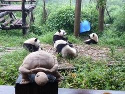 Janine en Chine