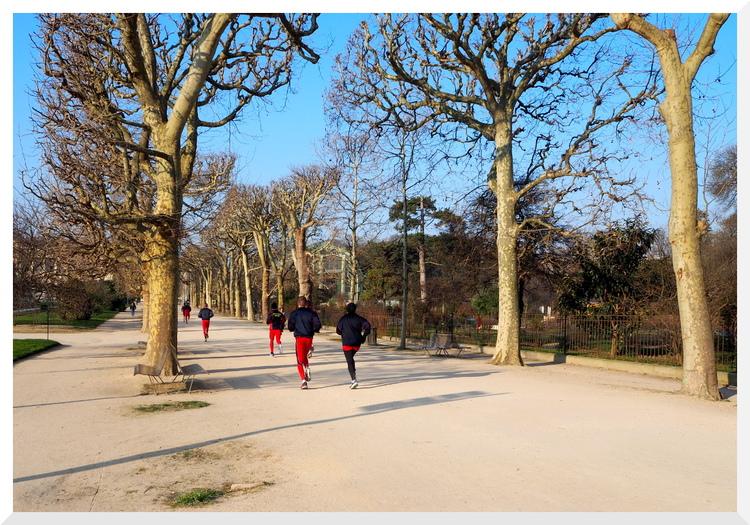 Flâner au Jardin des Plantes. Paris