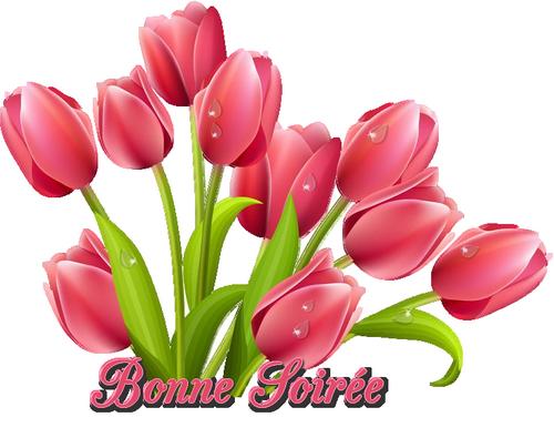 Histoire de fleurs