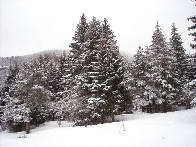 Quelques photos de neige