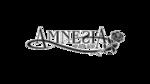 Liste des épisodes d'Amnesia