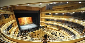 dance ballet public opera ballet theatre music