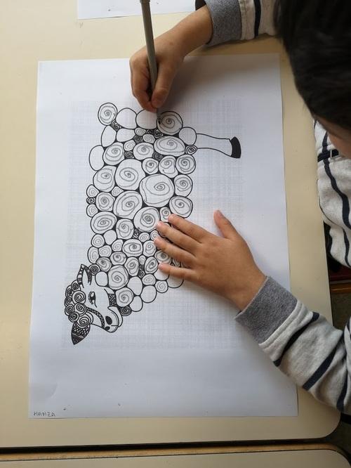 S4: les moutons en spirales
