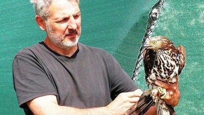 Le directeur du centre et soigneur, Didier Masci, ici avec une bondrée apivore, qui a été soignée, sauvée, et qui est prête à être relâchée.
