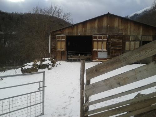 Janvier à la bergerie